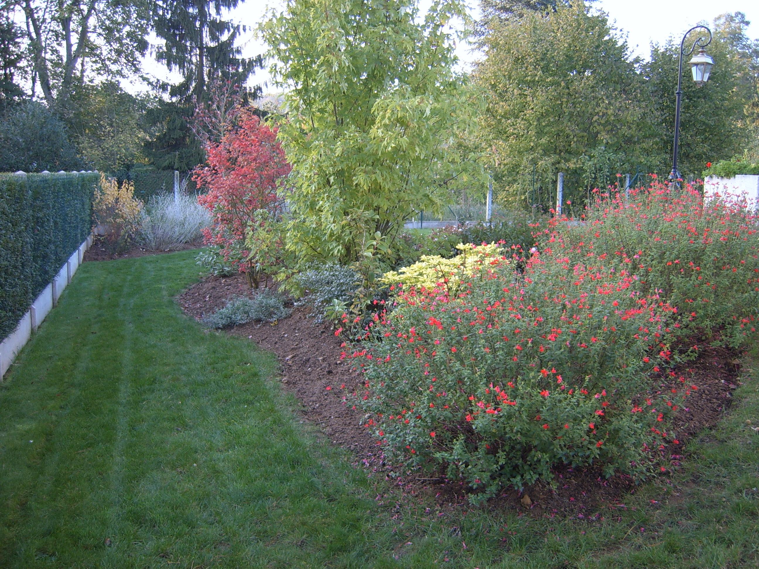 Plantation de v g taux brin de nature - Quel arbuste planter en octobre ...
