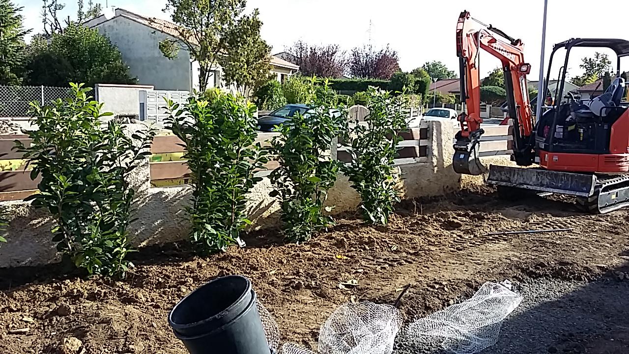 Plantation Mini pelle en train de faire les plantations