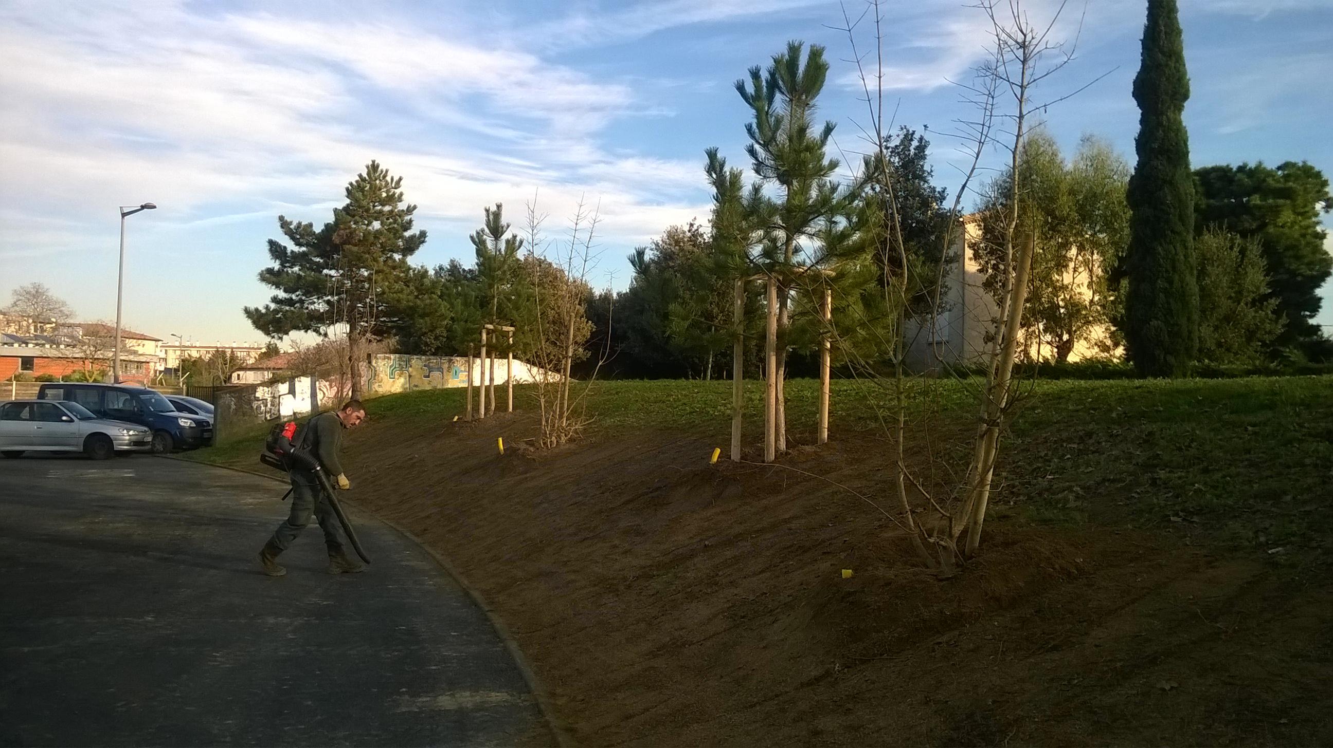 Plantation de gros arbres à Colomiers : Nettoyage du chantier