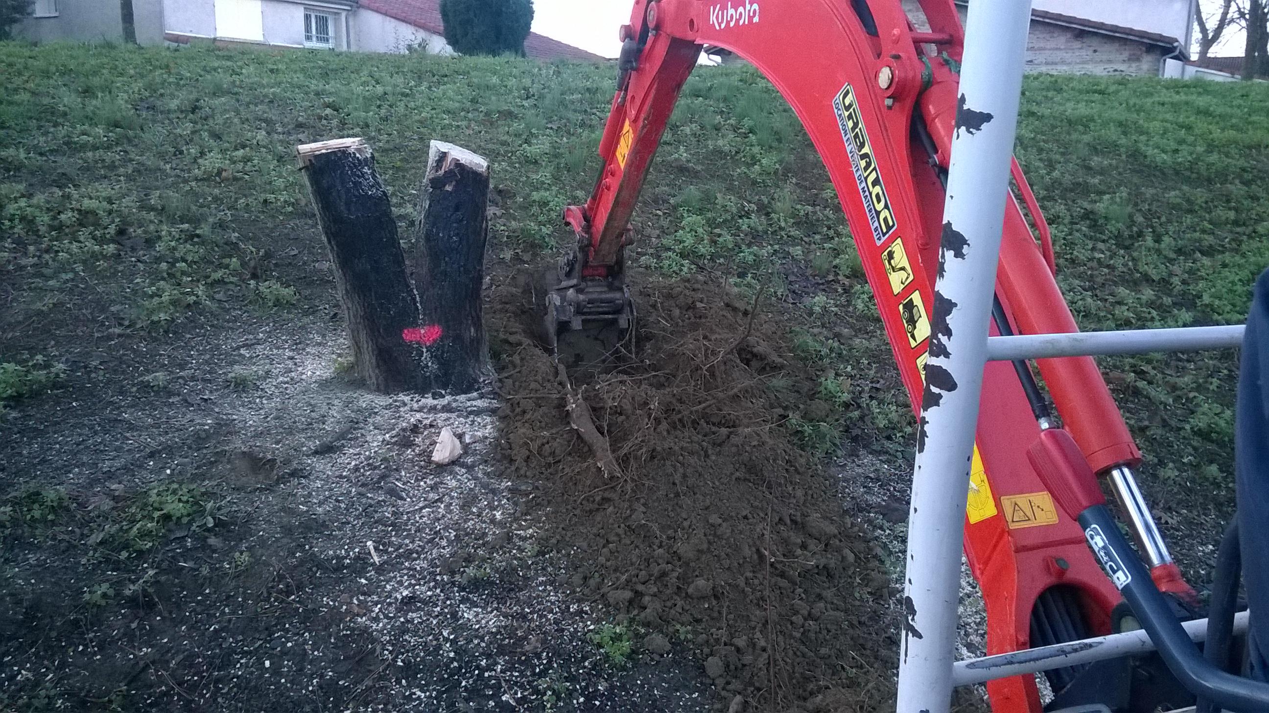 Plantation d'arbres à Colomiers : Dessouchage